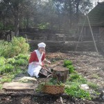 Caroline tends the Schiele Farm garden